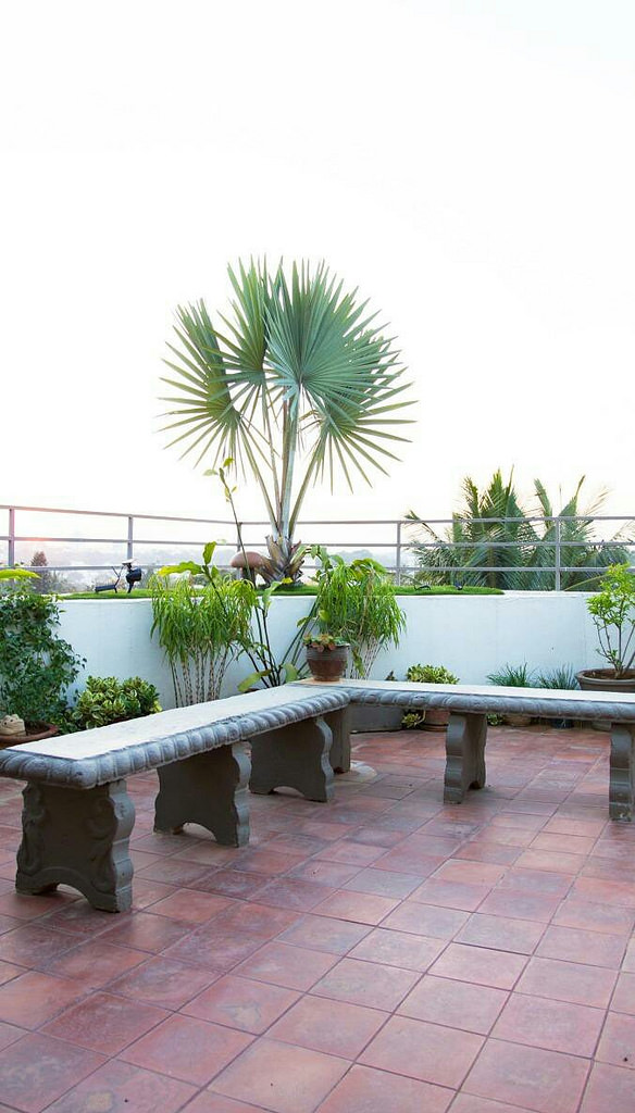 Terrace Garden Decor